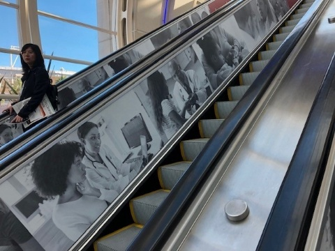 Picture of Escalator Clings
